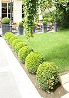 Садовые миниатюры от Ландшафтной Мастерской