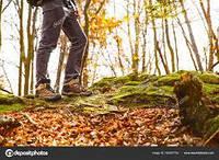 Разнообразить спорт осенью. 5 вариантов от Flagman Velo