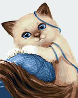 Картина по цифрам Сиамский котик (BK-GX23633) 40 х 50 см  [Без коробки]