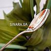 Серебряная детская ложка На первый зуб - Серебряная ложка На первый зубик, фото 6