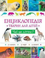 Чиї це дітки? Енциклопедія тварин для дітей, фото 1