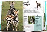 Чиї це дітки? Енциклопедія тварин для дітей, фото 5