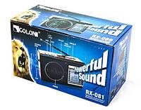 Радиоприемник Golon RX 081 + Solar, портативное радио на аккумуляторе , фото 1