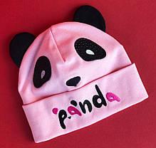 Детская шапочка  Для грудничков  в расцветках 870689, фото 3