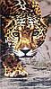 Полотенце пляжное Леопард