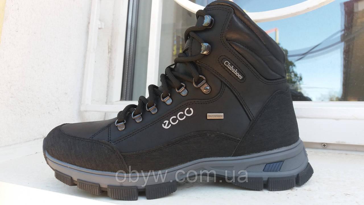 9b9b2de62 Зимняя обувь Ecco boom - Весь ассортимент в нашем магазине в наличии. в  Днепре