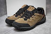 Кроссовки мужские  Merrell , коричневые (14343) размеры в наличии ►(нет на складе), фото 1