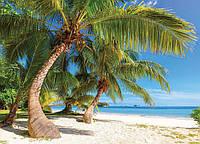 Фотообои *Престиж* № 53  Мальдивы (196х272)