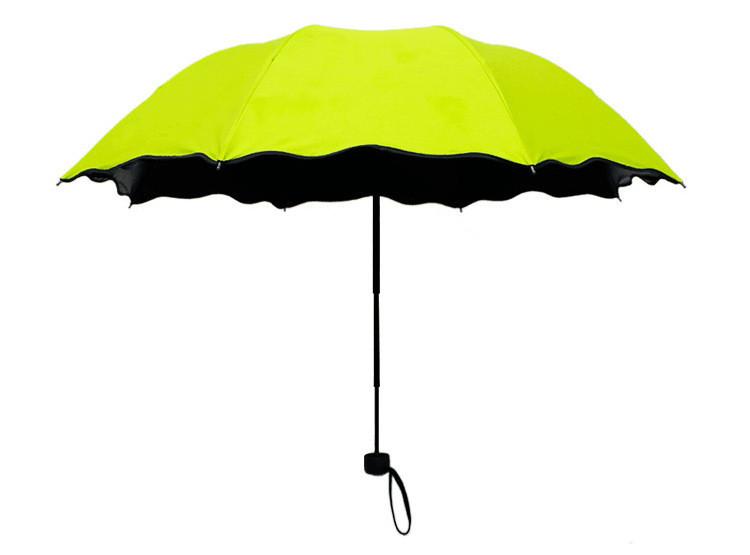 Жіночий парасольку СС170002