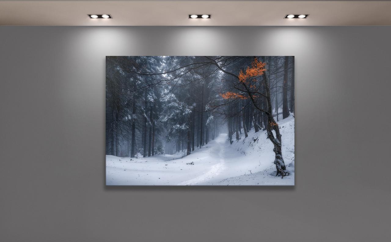 Фотокартина Зимний лес.