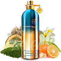 Montale Aoud Lagoon tester