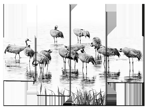 Модульная картина Фламинго. Черно-белая картина