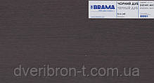 Двери Брама Модель 19.5 N, фото 3