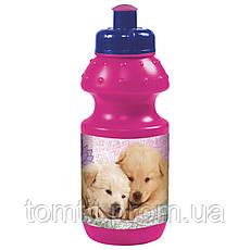 """Набор """"Cleo &  Frank (Клео и Франк)"""". Бутылка и Ланч бокс (ланчбокс), фото 3"""