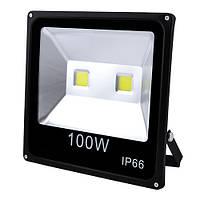 Прожектор светодиодный матричный 100W 2COB, IP66 (влагозащита), гладкий рефлектор