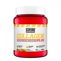 Коллаген для суставов и кожи, коллаген в порошке, UNS Collagen Plus 450g