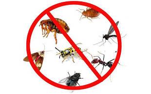Средства от насекомых и грызунов