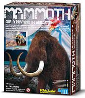 Набор раскопки Скелет мамонта 4M (00-03236)