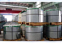 Жесть консервная белая электролитического лужения (ЭЖК) в рулонах или  листах