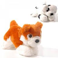 Мягкая игрушка Собачка 501-21