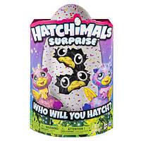Hatchimals Surprise Giraven Хэтчималс Сюрприз Двойняшки Жирафики Spin Master
