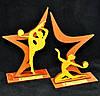 """Награда """"Звезда гимнастики"""", фото 2"""