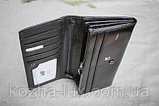 Кошелек женский кожаный B-601 чёрный Braun Buffel, натуральная кожа, фото 3