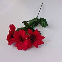 Веточка пуансеттии красная  5 см