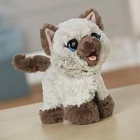 Интерактивный забавный котенок Ками FurReal Friends Kami Poopin Kitty Toy 453d2a757b56c