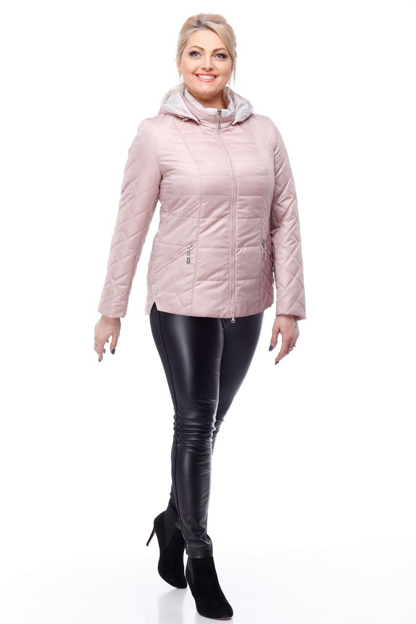 Куртка рожева на синтепоні великих розмірів весняна 50,52,54,56,58,60