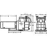Насос Hayward PL Plus 81031 (220В, 11.5 м³/час, 0.75HP), фото 4