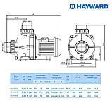 Насос Hayward HCP09203E1 KNG200 T1.B (380В, 26.2 м³/час, 2HP), фото 2