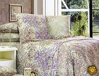 Еней-Плюс Двойной постельный комплект С0143