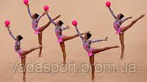 Мяч гимнастический глянцевый анемон(роз-малиновый) 400гр Togu