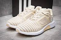 Кроссовки мужские Adidas  ClimaCool, бежевые (12482),  [  43 (последняя пара)  ], фото 1