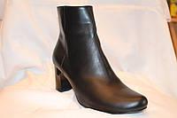 Класичні жіночі черевики на каблуку