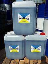 Антифриз для систем отопления Econorm -20C, кан 20л фирменная, фото 2
