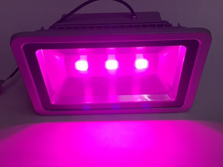 Светодиодный фитопрожектор SL-150 150W 3LED серый IP65 Код.59362