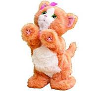 Интерактивный Дейзи игривый котенок Hasbro FurReal Friends Daisy A2003 ad68fd4a60678