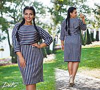 Модные женские платья ткань ангора софт полоска в размерах 50-52   54-56, фото 1