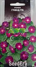 Іпомея фіолетова Гранд Па 0,5 г