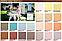 Лазурь для дерева Pastel Wood Color Bionic House 2,5л, фото 2