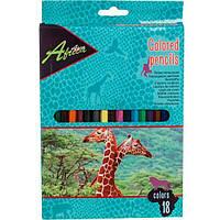 Карандаши цветные Economix Е11531 Africa 18 шт