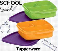 Ланч-бокс Школьник с разделителем (4,5*15*15 см) Tupperware зеленый