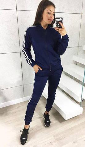 aacc56b06eb Модный женский спортивный костюм-двойка