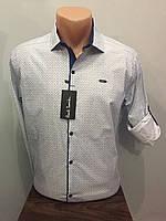 4e2a4ce6e10 Турецкие мужские рубашки Amato в категории рубашки мужские в Украине ...