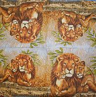 Декупажные салфетки прайд львов 231