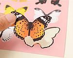 Набір метеликів 3D, фото 4