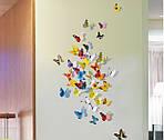 Набір метеликів 3D, фото 5