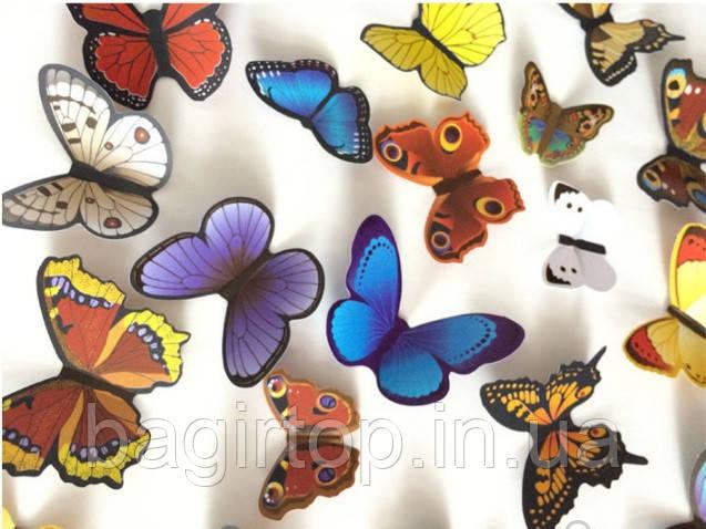 Набір метеликів 3D